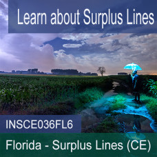 Florida: 6 hr all Licenses CE - Surplus Lines (INSCE036FL6)
